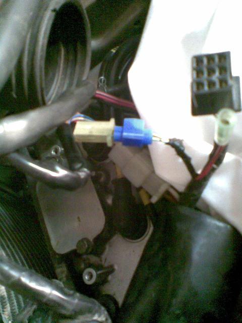 Préparation de la saison piste 2008 ( ZX6R 98 et 99 inside ) - Page 12 Photo036